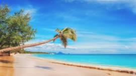 Cayo Santa María + La Habana + Varadero · 8 Días · Julio 2018: Perfecta combinación para una semana a puro relax en las playas caribeñas!