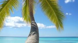 Semana Santa en Aruba · 09 Días · Julio 2018 ·Recreación, descanso, cultura y placer.