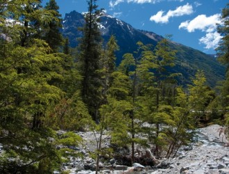 Bariloche, Argentina · 04 Días · Feriado Noviembre 2017 · Un paraíso que combina aventura y descanso.