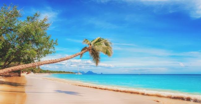 Cayo Santa María + La Habana + Varadero · 8 Días · Caribre 2019: Perfecta combinación para una semana a puro relax en las playas caribeñas!