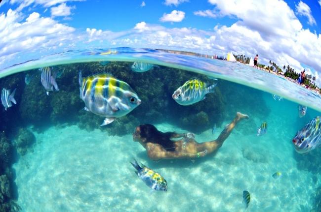 Porto Galinhas, Brasil · Verano 2020 · 8 días · Disfrutá de una piscina natural de tibias aguas poblada de peces de colores y arrecifes de corales.